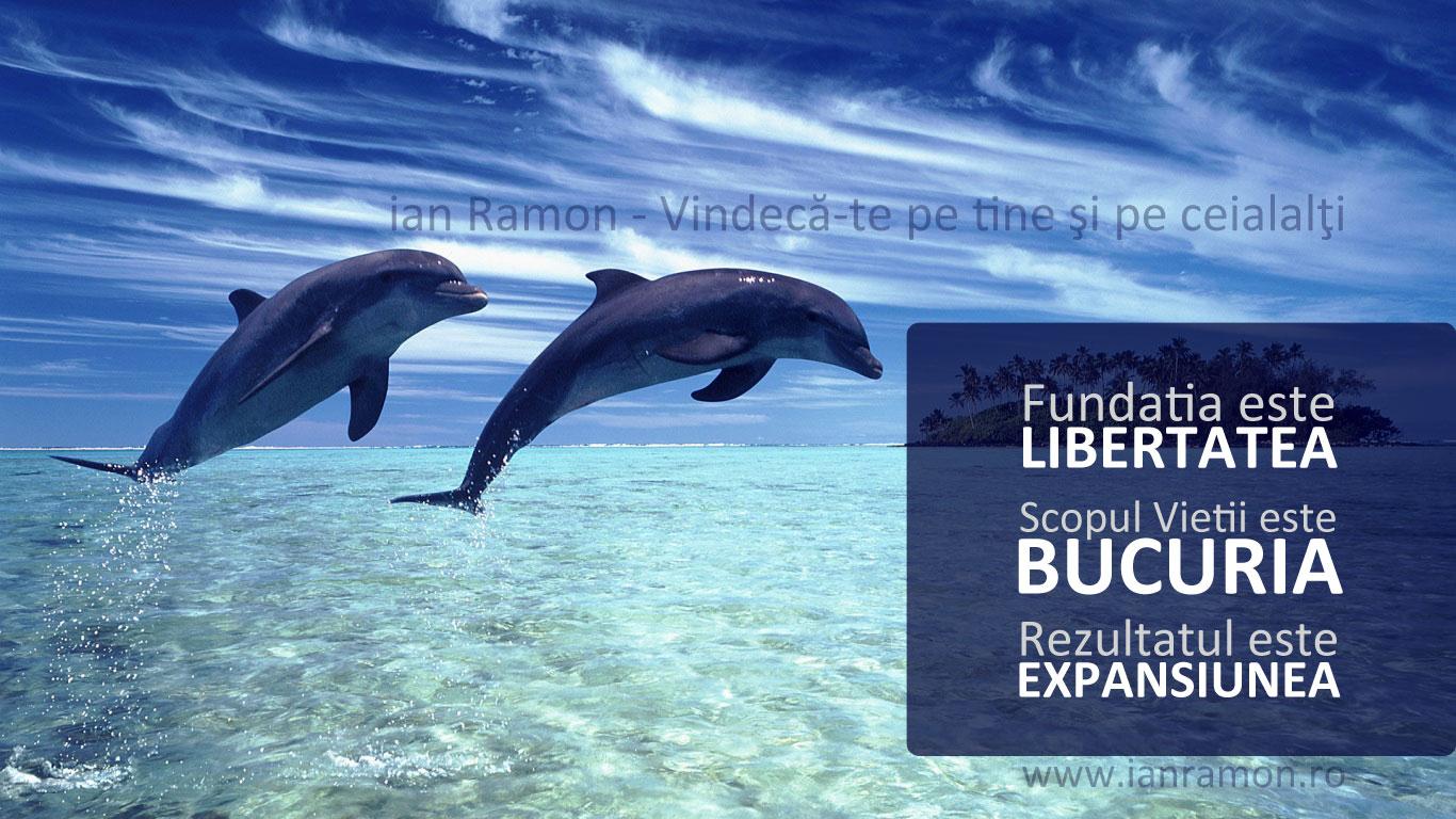 Vindecare si Reconectare la Scopul Vietii cu delfinii - ianramon.ro
