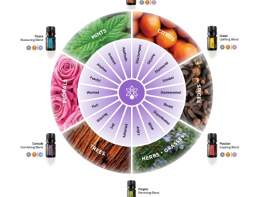 Roata emotiilor aromaterapie doterra